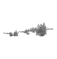 wild coniferous forest landscape with hand drawn vector image