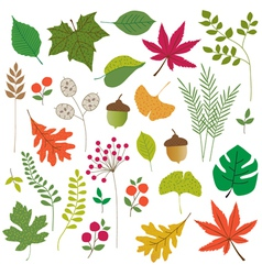 Leaves clipart vector