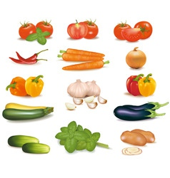 super group colored vegetables vector image vector image
