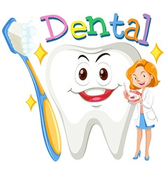 Female dentist with clean tooth vector image vector image