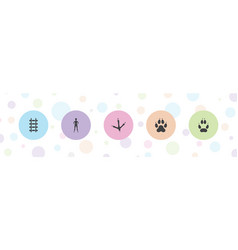 5 track icons vector