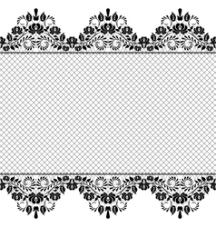 Background with lace and net vector image