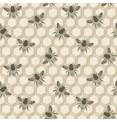 bee honeycomb pattern vector image
