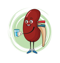 Kidney funny cartoon vector