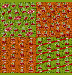 Seamless patterns with fruits 4 elements set vector