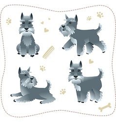 Set of schnauzer pupys vector