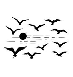 Set seagulls silhouettes black flying birds vector
