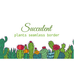 succulents seamless border pattern cacti green vector image