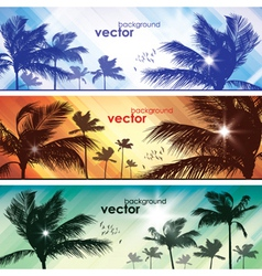 Exotic Palm Trees Background Banners vector image