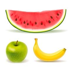 Fresh fruit set on white background vector image vector image