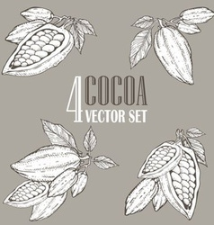 Cocoa Set vector image vector image