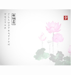 Lotus flowers on white background traditional vector