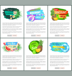 posters exotic fruits and summertime accessories vector image
