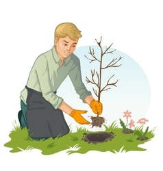 Young man planting sapling in garden vector