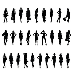 fashion 2 vector image