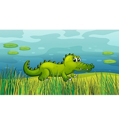 A crocodile beside the pond vector