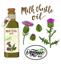 Bottle milk thistle oil and flax flower vector