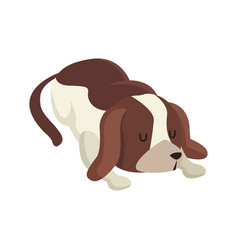 Dog pet animal sleeping image vector