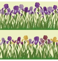 Flowers iris set seamless vector