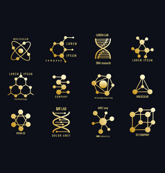 golden molecules logotypes vector image