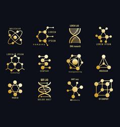 Golden molecules logotypes vector