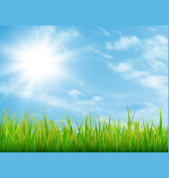 green grass and blue sky with clouds vector image