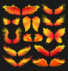 Flame bird fire wings fantasy feather burning vector
