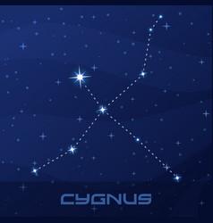 constellation cygnus swan night star sky vector image