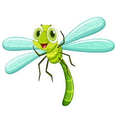 Dragonfly with happy face vector