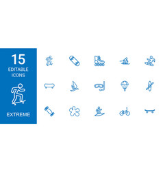 extreme icons vector image