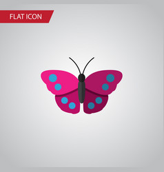 isolated violet wing flat icon archippus vector image