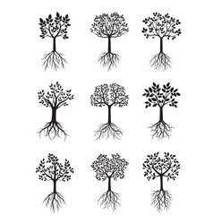 set black trees with roots vector image
