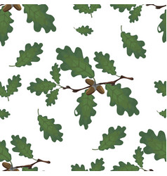 green branches of oak with acorns and leaves vector image