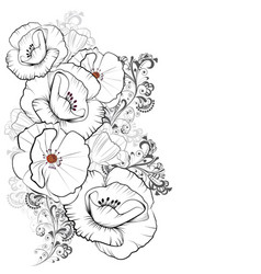 bouquet of poppies vector image