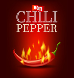 Burning hot chili pepper with flame on red vector