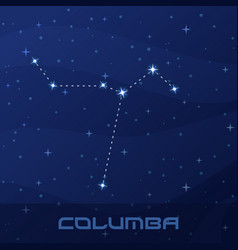 Constellation columba dove night star sky flyer vector