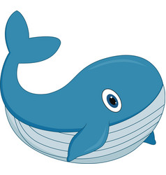 cute cartoon whale on white background vector image