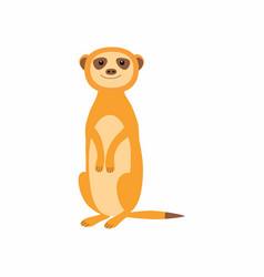 cute meerkat isolated on vector image