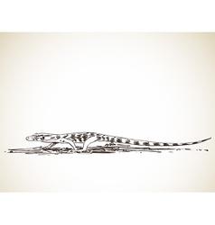 monitor lizard vector image