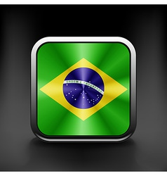 Brazil icon flag national travel icon country vector image vector image