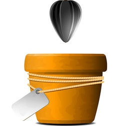 Sunflower seed falls in a flower pot vector image vector image