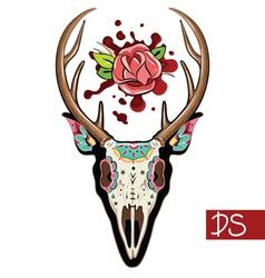 Deer Skull vector image vector image