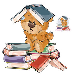 teddy bear reading book vector images over 120