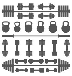 A set of equipment for the gym vector image