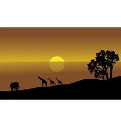 An african landscape silhouette vector