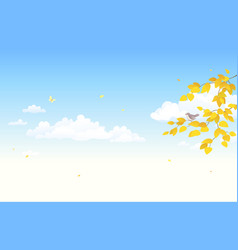 autumn sky background vector image