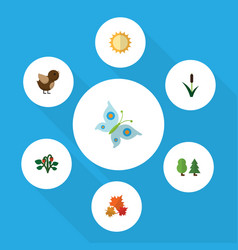 Flat icon ecology set of berry canadian cattail vector
