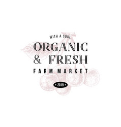 organic and fresh farm market vector image