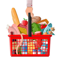 plastic shopping basket with fresh products vector image