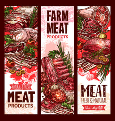 Raw fresh farm meat banners for butchery vector